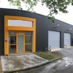 Location Local d'activités Toulouse 250 m²