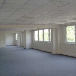 Location Bureau Aulnay-sous-Bois 394 m²