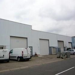 Location Entrepôt Vénissieux 187 m²