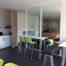 Location Bureau Lyon 9ème 1003 m²