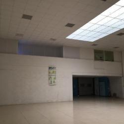Vente Local d'activités Savigny-le-Temple 1170 m²