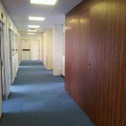 Location Bureau Bagneux 1030 m²