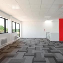 Vente Local d'activités Collégien 838 m²