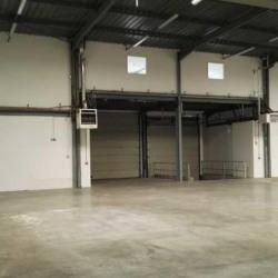 Location Entrepôt Le Thillay 670 m²