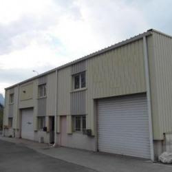 Location Local d'activités Saint-Martin-d'Hères (38400)