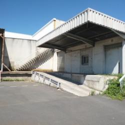 Location Local d'activités Béziers 1705 m²