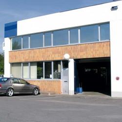 Location Entrepôt Champs-sur-Marne 384 m²
