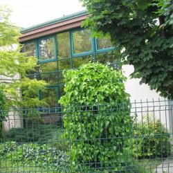 Location Bureau Saint-Germain-en-Laye 256 m²