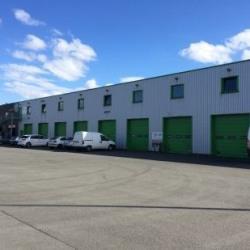 Location Local d'activités Halluin 760 m²