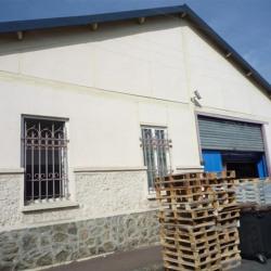 Location Local d'activités Saint-Maur-des-Fossés (94100)