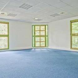 Vente Bureau Lognes 381 m²