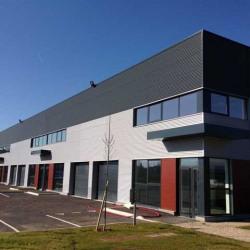 Location Local d'activités Élancourt 435 m²