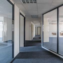 Location Bureau Boulogne-Billancourt 191 m²