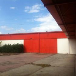 Location Local d'activités Portet-sur-Garonne 4750 m²