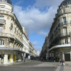 Location Bureau Orléans 80 m²