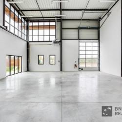 Vente Local d'activités Collégien 6946 m²