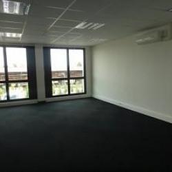 Vente Entrepôt Vaulx-en-Velin 395 m²
