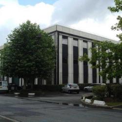Location Bureau Verrières-le-Buisson 1772 m²