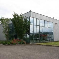 Vente Entrepôt Monswiller 5766 m²