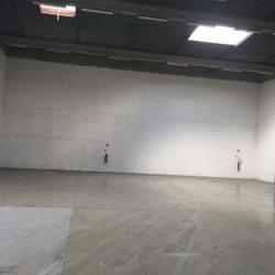 Location Local d'activités Antony 816 m²