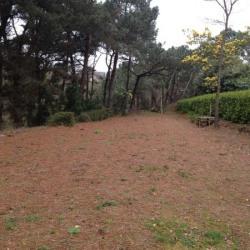 Vente Terrain Erquy 2282 m²