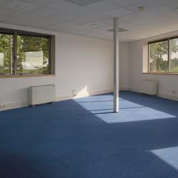 Vente Bureau Courcouronnes 318 m²