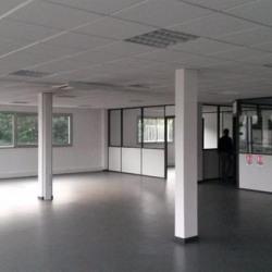 Location Local d'activités Toulouse 520 m²