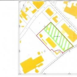 Vente Terrain Orléans 20000 m²