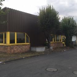 Location Local d'activités Le Blanc-Mesnil 270 m²