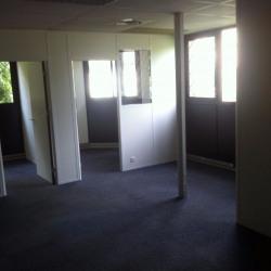 Location Bureau Toulouse 119 m²