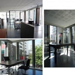 Location Bureau Paris 13ème 160 m²