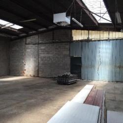 Location Local d'activités Romainville 548 m²