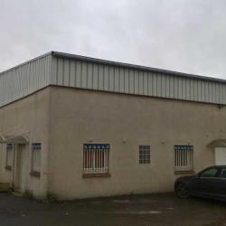 Vente Local d'activités Sainte-Geneviève-des-Bois 511 m²