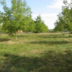Vente Terrain Parcoul 3480 m²