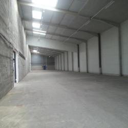 Location Entrepôt Reyrieux 2000 m²