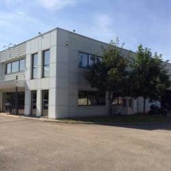Vente Local d'activités Vaulx-en-Velin 620 m²