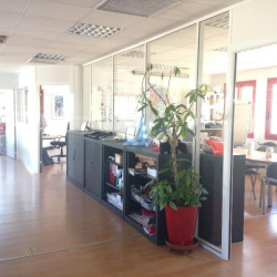 Location Bureau Bourgoin-Jallieu 197 m²