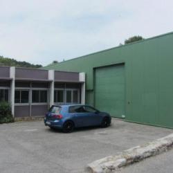 Location Local d'activités Sophia Antipolis 543 m²