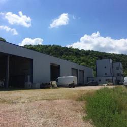 Location Local d'activités Saint-Romain-en-Gal 1352 m²