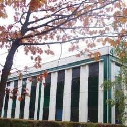 Location Bureau Limonest 3800 m²