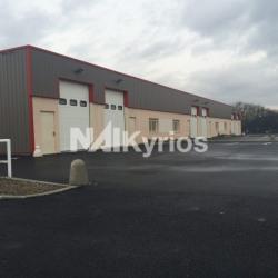Location Local d'activités Chassieu 120 m²