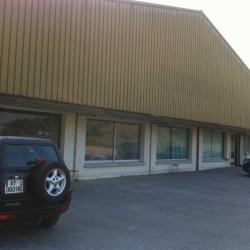 Vente Local d'activités Vallières 1400 m²