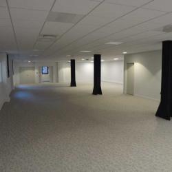 Location Bureau La Plaine Saint Denis 337 m²