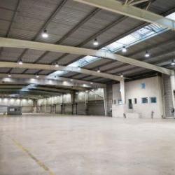 Location Local d'activités La Riche 8037 m²