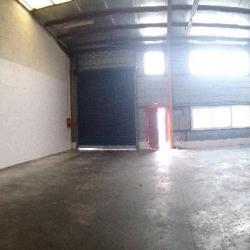 Location Local d'activités Quincy-Voisins 219 m²