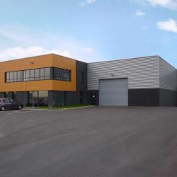 Vente Local d'activités Hallennes-lez-Haubourdin 1455 m²