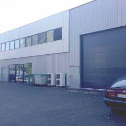 Location Local d'activités Bordeaux 127 m²