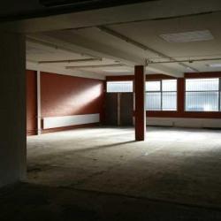 Location Local d'activités Nanterre 300 m²