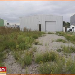 Location Local d'activités Domérat 300 m²
