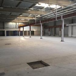 Location Local d'activités Trappes 1000 m²